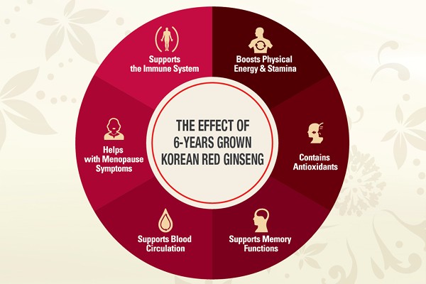 What is korean red ginseng good for?
